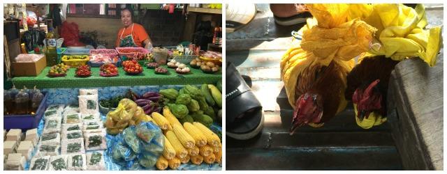 Eef op Reis: Sulawesi| Indonesië (Deel 2)