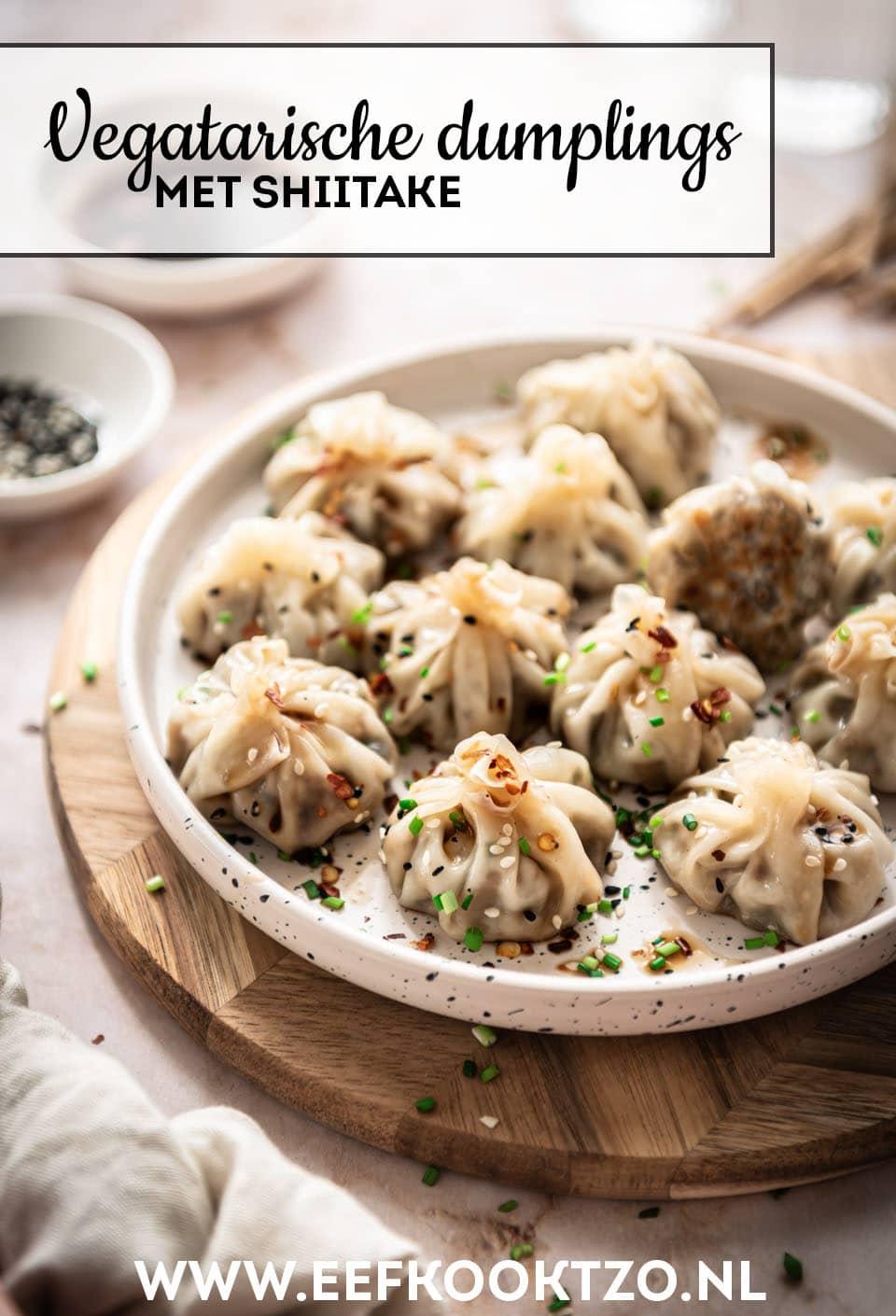 Vegetarische dumplings Pinterest Collage