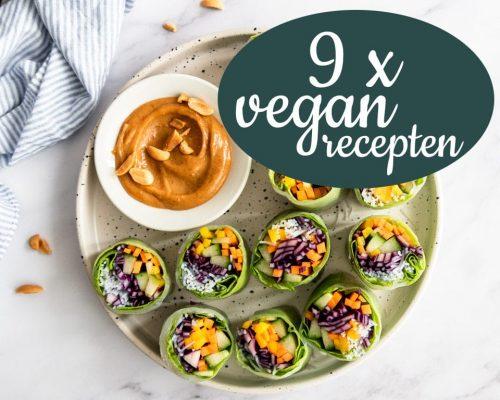 9 x snelle vegan maaltijden