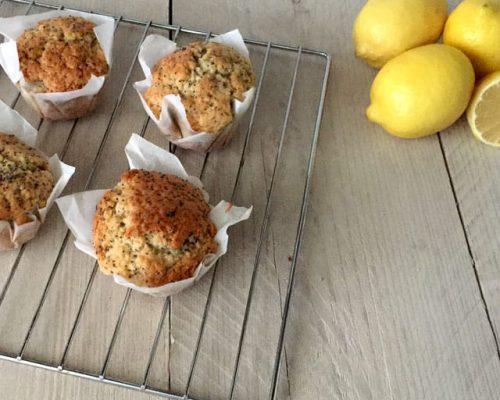 Citroen-Muffins-met-Maanzaa
